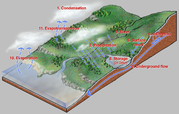 Archcuhkeduhk Patrick Slope Background Information Water Cyclehtm